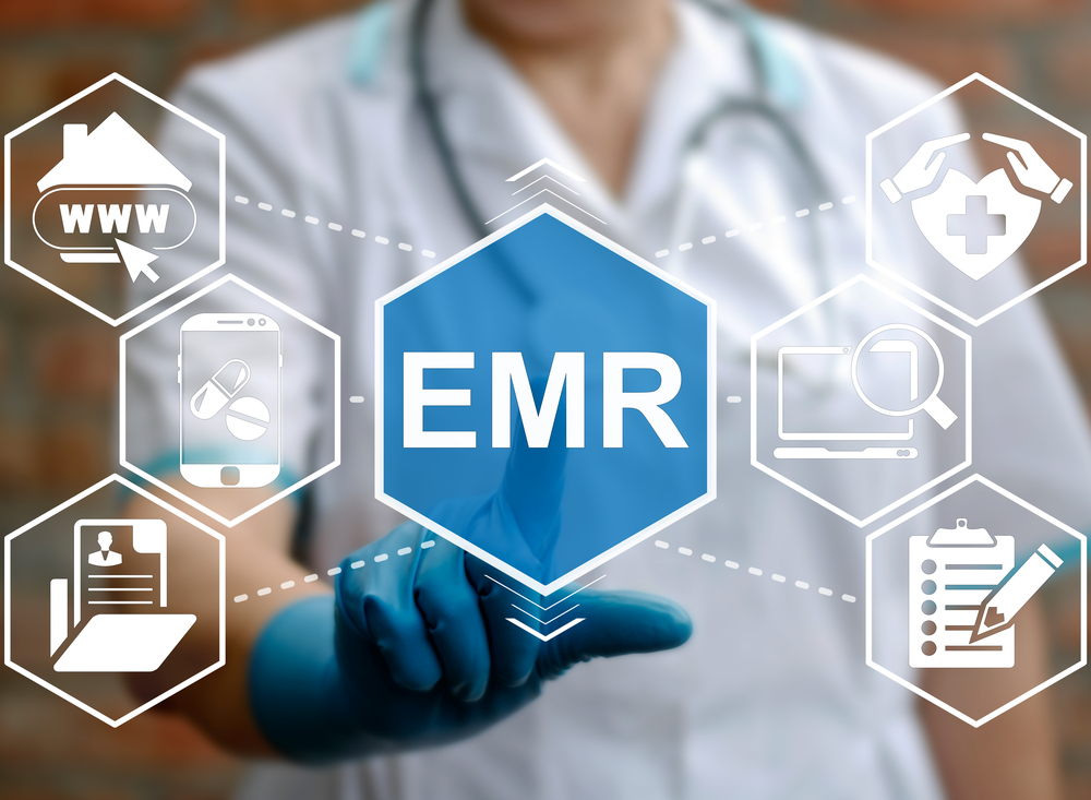 Physician with EMR systems chart