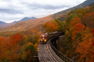 train and foliage